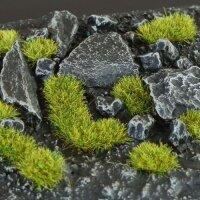 Moss 2mm -