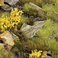 Highland Bases -