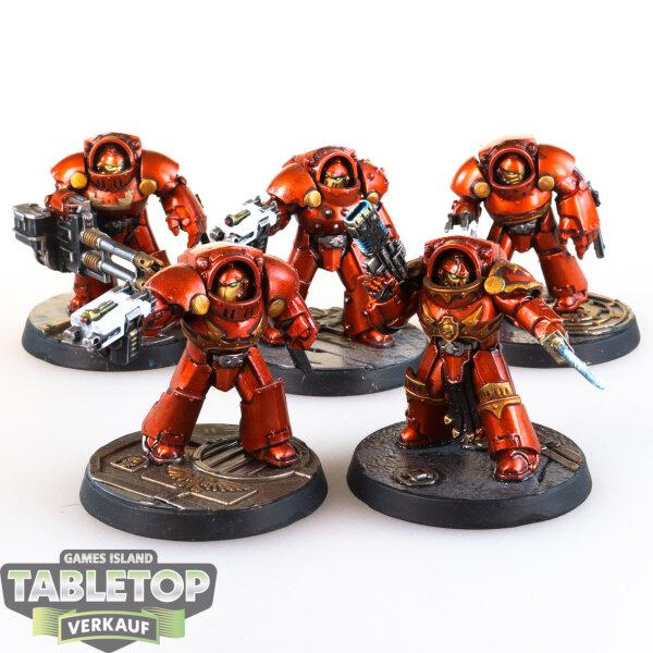 Space Marines - 5 Tartaros Terminators - gut bemalt