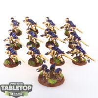 Tyranids - 12 Termagants und 1 Ripper Swarm - gut bemalt